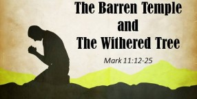 130203 The Barren Temple and the Withered Tree-1