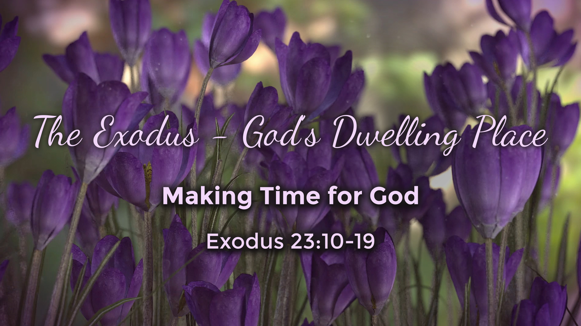 Image for the sermon Making Time for God