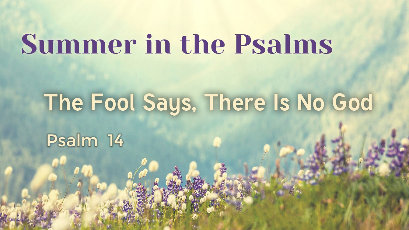 Image for the sermon The Fool says, There Is No God