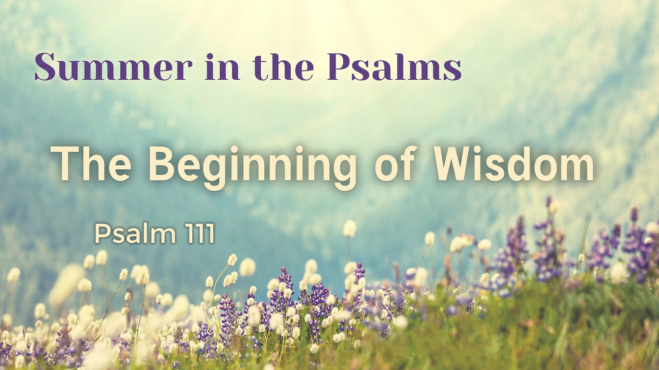 Image for the sermon The Beginning of Wisdom