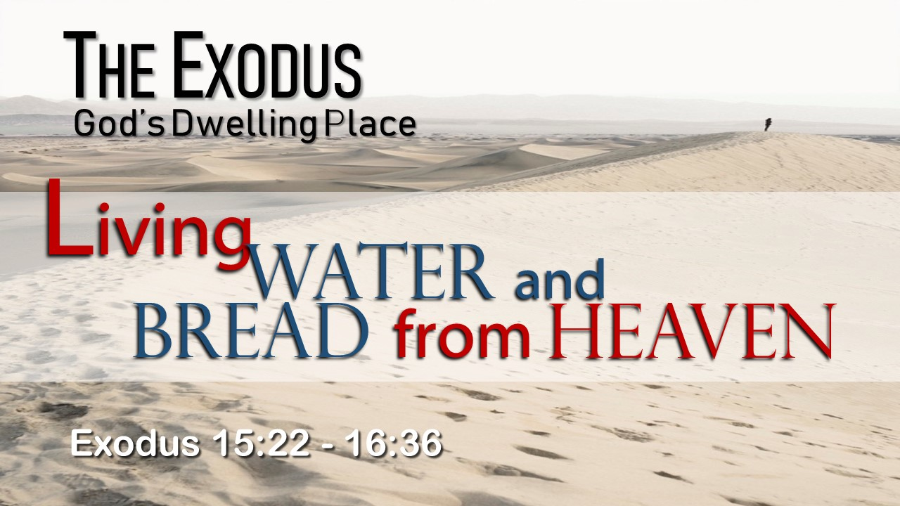 Image for the sermon Living Water and Bread from Heaven