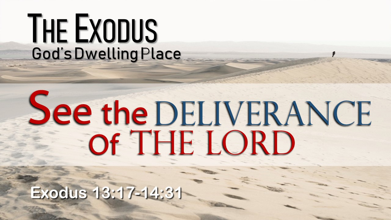 Image for the sermon See the Deliverance of the Lord