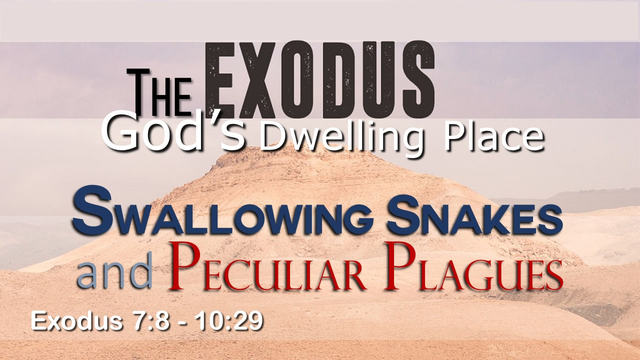 Image for the sermon Swallowing Snakes and Peculiar Plagues