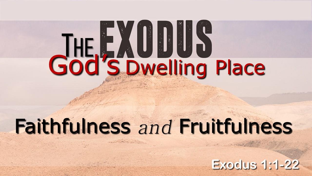 Image for the sermon Faithfulness and Fruitfulness